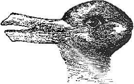 rabbit-duck image