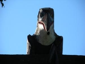 totem crow