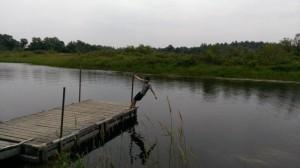 daimon on dock